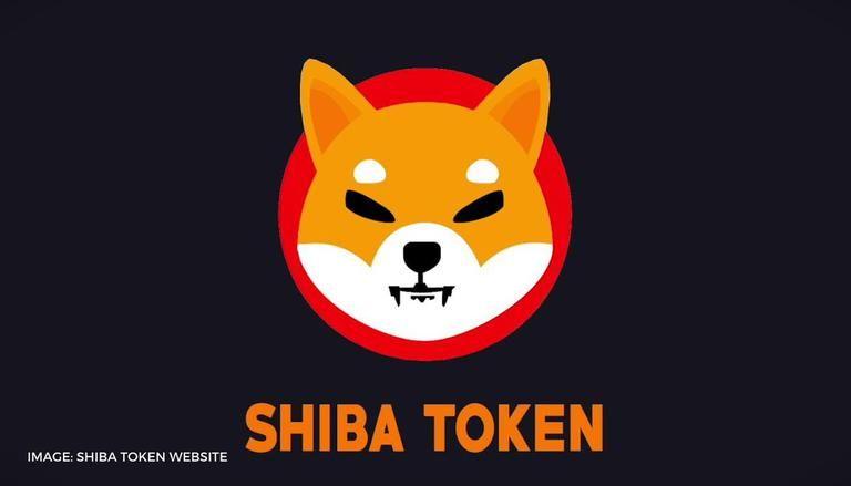 שיבא אינו SHIB