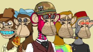 ניפטיז קופים